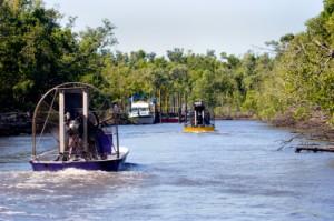 Botes en los Everglades