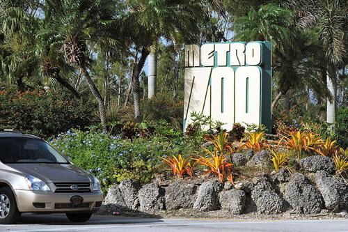 Metrozoo Miami