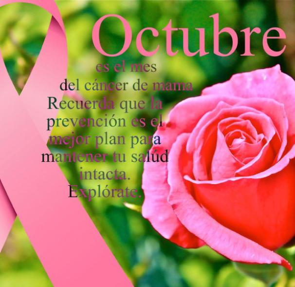 octubre mes del cáncer de seno