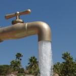 29 millones de dólares invertirá Florida para mejorar calidad del agua