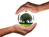 Miami es la quinta ciudad más ecológica de EUA