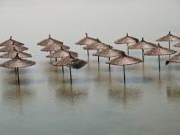Aumento en nivel del mar sumergirá a Miami