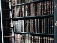 Las librerías más interesantes de Miami