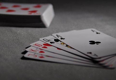 Guía interactiva de casinos en el Sur de la Florida