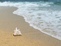 10 playas en Miami (incluyendo para nudistas)