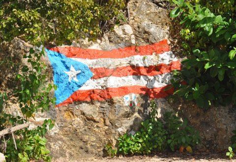 Políticos de Florida cortejan a los puertorriqueños desplazados por Huracán